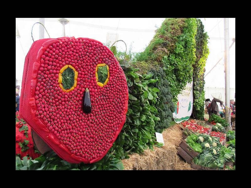 The Hungry Hungry Caterpillar as an entrant in the large garden category
